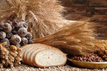Trigo y otros cereales