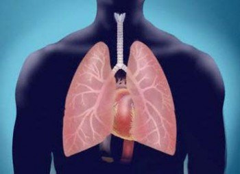 El asma: sus remedios naturales
