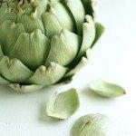 Alcachofa: propiedades, usos y su utilidad para adelgazar