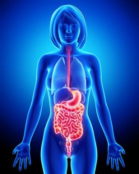 Cómo limpiar los intestinos: 5 Consejos para hacerlo natural