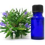 Aromas que Relajan Cuerpo y Mente